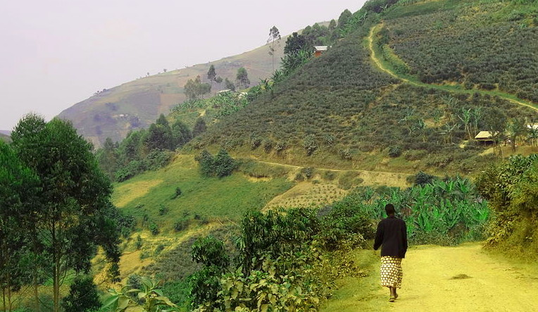 photo by Adam Jones, PhD, in Southwestern Uganda.